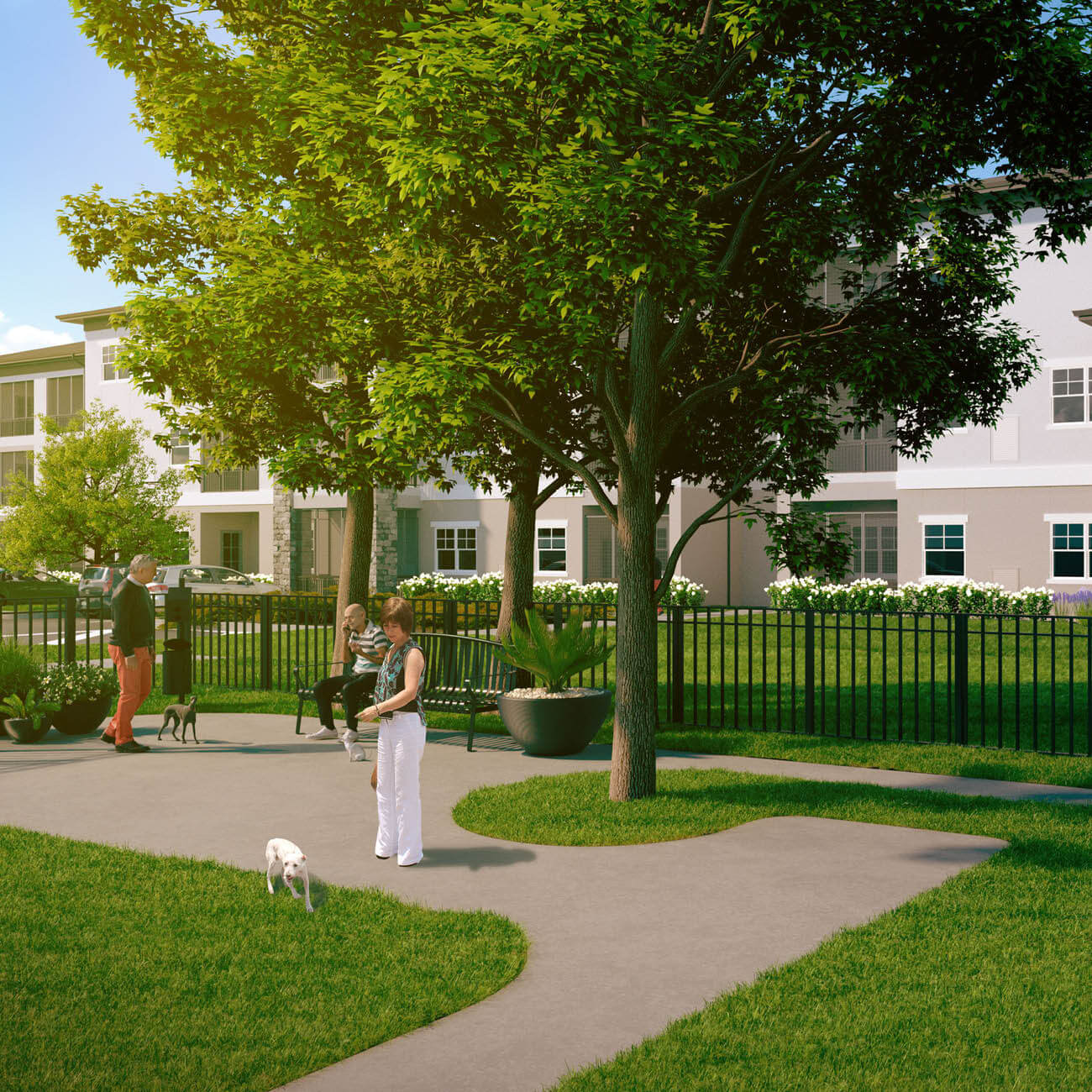 3D Computer rendering of community dog park