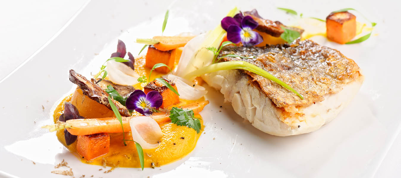 plated cooked fish filet with puree side