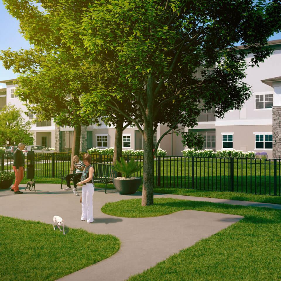 3D rendering of community dog park