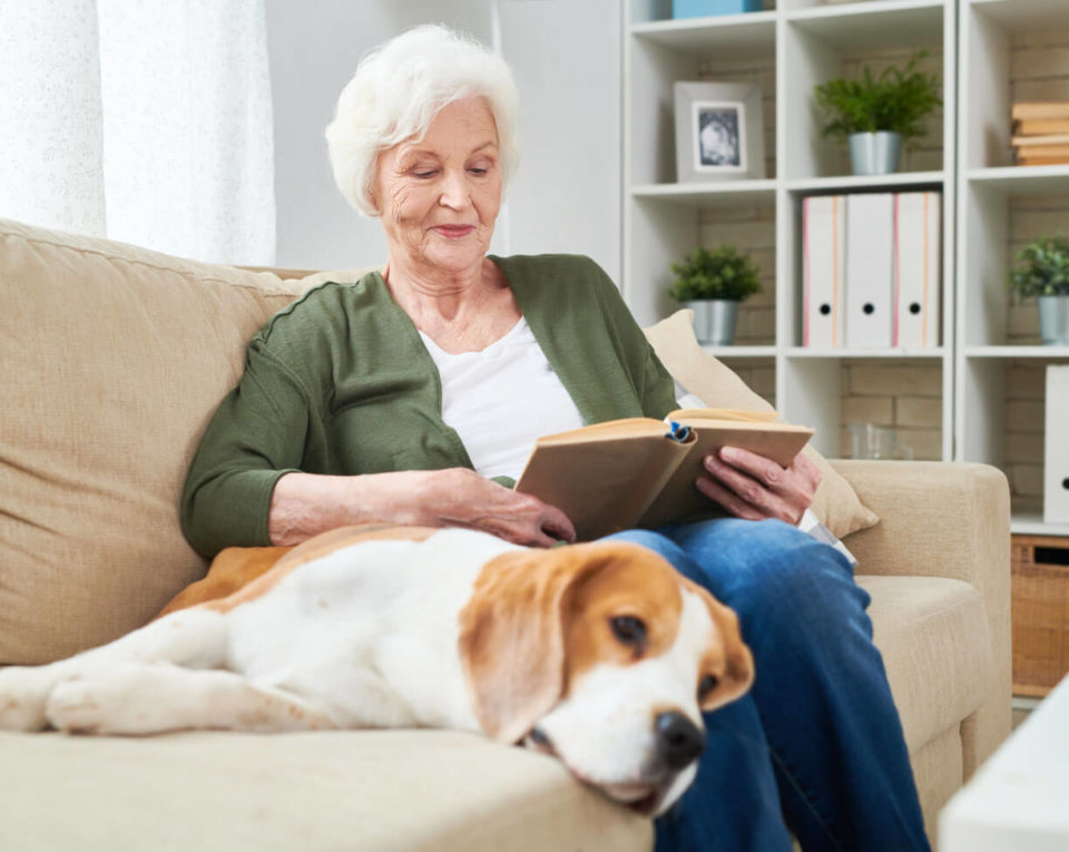 Photo of senior woman on couch reading book with dog